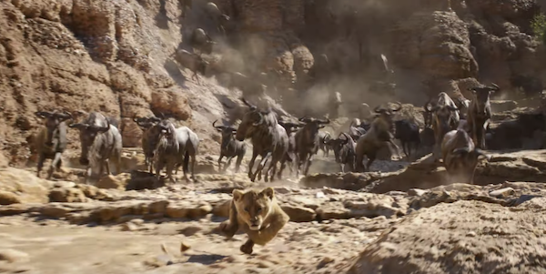 the-lion-king-2019-still